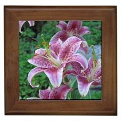 Pink Tiger Lily Framed Ceramic Tile