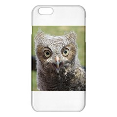 baby screech owl iPhone 6 Plus/6S Plus TPU Case