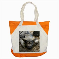 Wolf pup Accent Tote Bag