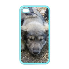 Wolf pup Apple iPhone 4 Case (Color)