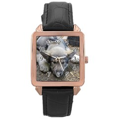 Wolf pup Rose Gold Leather Watch