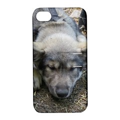 Wolf pup Apple iPhone 4/4S Hardshell Case with Stand