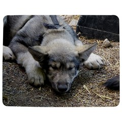 Wolf pup Jigsaw Puzzle Photo Stand (Rectangular)