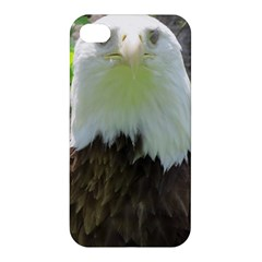American Eagle Apple iPhone 4/4S Premium Hardshell Case