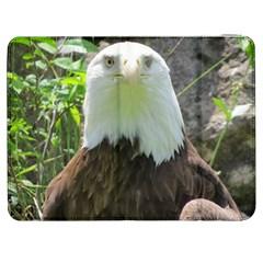American Eagle Samsung Galaxy Tab 7  P1000 Flip Case