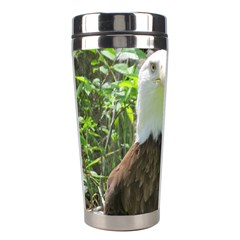 American Eagle Stainless Steel Travel Tumblers