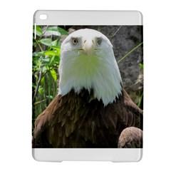 American Eagle iPad Air 2 Hardshell Cases