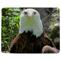 American Eagle Jigsaw Puzzle Photo Stand (Rectangular)