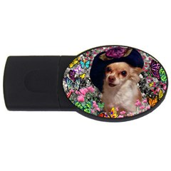 Chi Chi In Butterflies, Chihuahua Dog In Cute Hat USB Flash Drive Oval (2 GB)