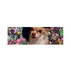 Chi Chi In Butterflies, Chihuahua Dog In Cute Hat Satin Scarf (Oblong)