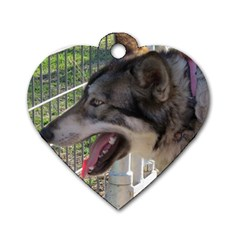 9 Month old wolf  Dog Tag Heart (One Side)