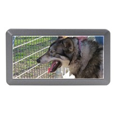 9 Month old wolf  Memory Card Reader (Mini)
