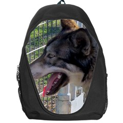 9 Month old wolf  Backpack Bag