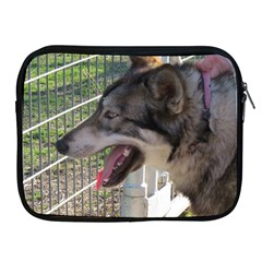 9 Month old wolf  Apple iPad 2/3/4 Zipper Cases