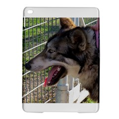 9 Month old wolf  iPad Air 2 Hardshell Cases
