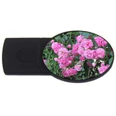 Wild Roses USB Flash Drive Oval (1 GB)