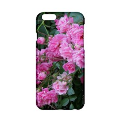 Wild Roses Apple iPhone 6/6S Hardshell Case