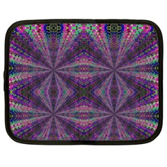 LEARN TRUTH Netbook Case (Large)