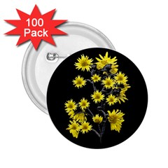 Sunflowers Over Black 2.25  Buttons (100 pack)