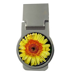 Yellow Flower Close up Money Clips (Round)