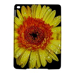 Yellow Flower Close up iPad Air 2 Hardshell Cases