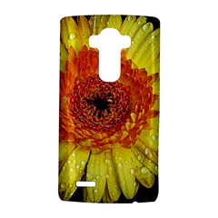 Yellow Flower Close up LG G4 Hardshell Case