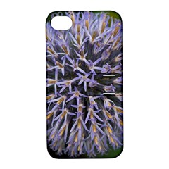 Globe Mallow Flower Apple iPhone 4/4S Hardshell Case with Stand
