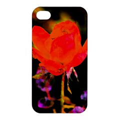 Red Beauty Apple iPhone 4/4S Hardshell Case