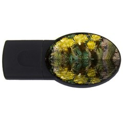 Cactus Flowers with Reflection Pool USB Flash Drive Oval (2 GB)