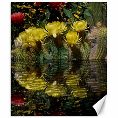 Cactus Flowers with Reflection Pool Canvas 20  x 24