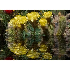Cactus Flowers with Reflection Pool Birthday Cake 3D Greeting Card (7x5)