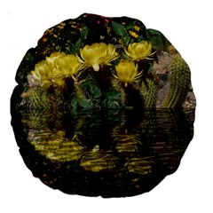 Cactus Flowers with Reflection Pool Large 18  Premium Round Cushions