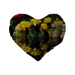 Cactus Flowers with Reflection Pool Standard 16  Premium Flano Heart Shape Cushions