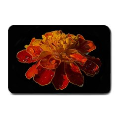 Marigold on Black Plate Mats