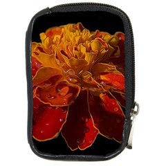 Marigold on Black Compact Camera Cases