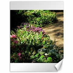 Shadowed ground cover Canvas 36  x 48