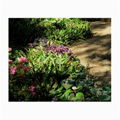 Shadowed ground cover Small Glasses Cloth (2-Side)