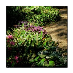 Shadowed ground cover Face Towel