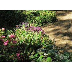 Shadowed ground cover Birthday Cake 3D Greeting Card (7x5)