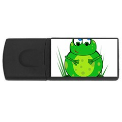 Green Frog USB Flash Drive Rectangular (1 GB)