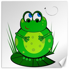Green Frog Canvas 12  X 12