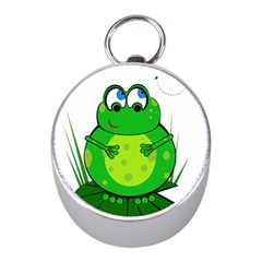 Green Frog Mini Silver Compasses