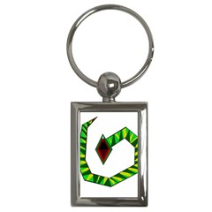 Decorative Snake Key Chains (Rectangle)