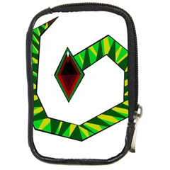 Decorative Snake Compact Camera Cases