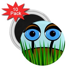 Snail 2.25  Magnets (10 pack)