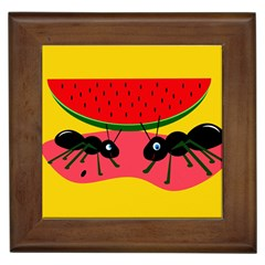 Ants and watermelon  Framed Tiles