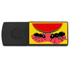 Ants and watermelon  USB Flash Drive Rectangular (2 GB)