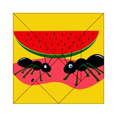 Ants And Watermelon  Acrylic Tangram Puzzle (6  X 6 )