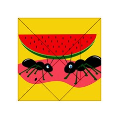 Ants and watermelon  Acrylic Tangram Puzzle (4  x 4 )
