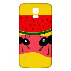 Ants and watermelon  Samsung Galaxy S5 Back Case (White)